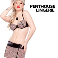 penthouse lingerie by coquette